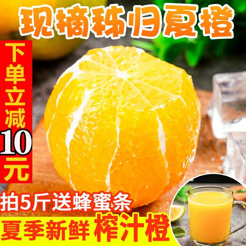 秭归夏橙新鲜5斤脐橙橙子现摘应季水果当季整箱榨汁橙甜橙10