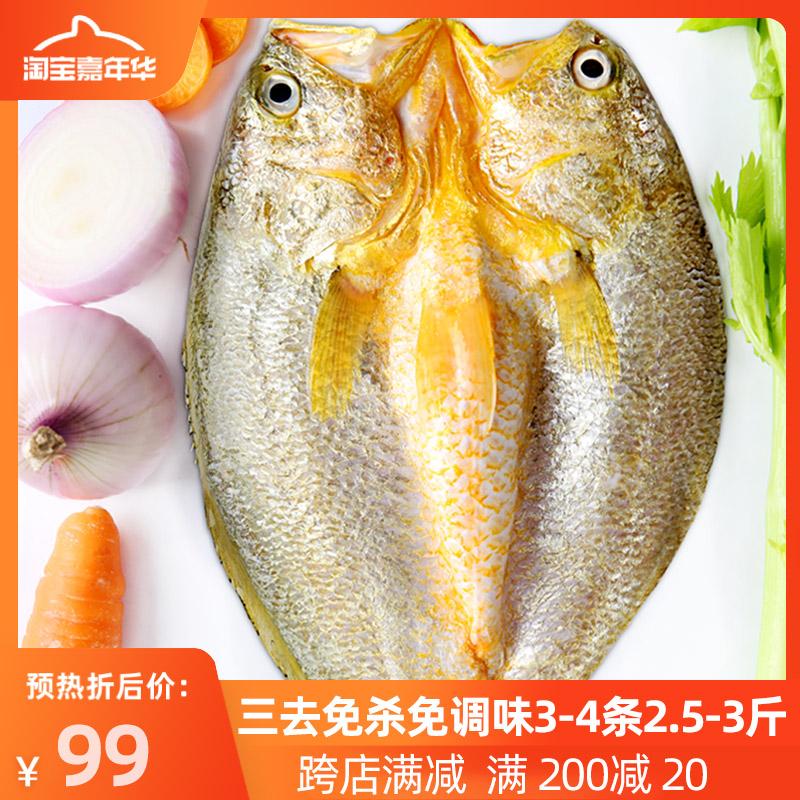 时蔬黄花鱼温州黄鱼鲞咸干白鲞开背三去海鱼冷冻新鲜海鲜大黄瓜鱼