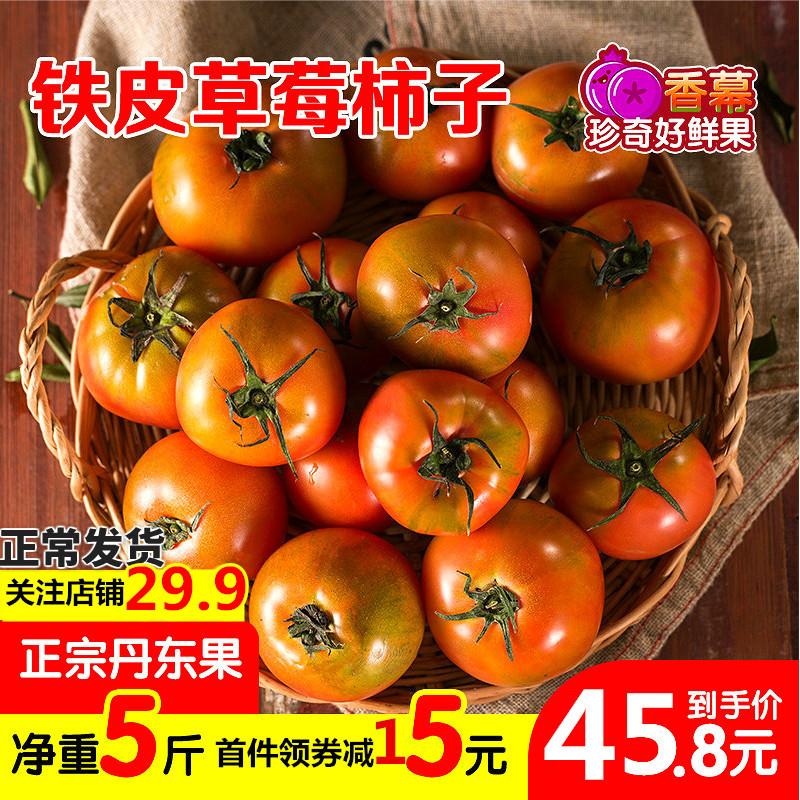丹东草莓小柿子铁皮柿子5斤西红柿当季新鲜水果整箱沙瓤绿腚1甜柿