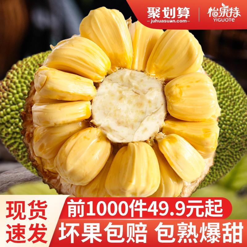 海南菠萝蜜新鲜包邮一整个现摘现发当季水果整箱黄肉木菠萝30斤