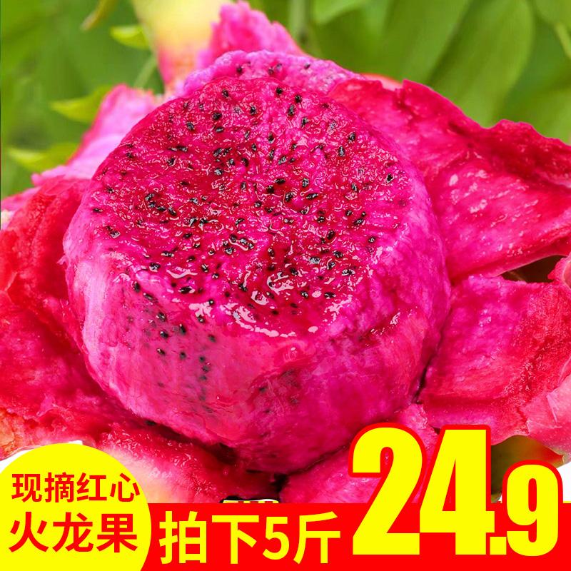 越南红心火龙果5斤火龙果红心大果10包邮新鲜水果燕窝果应季水果