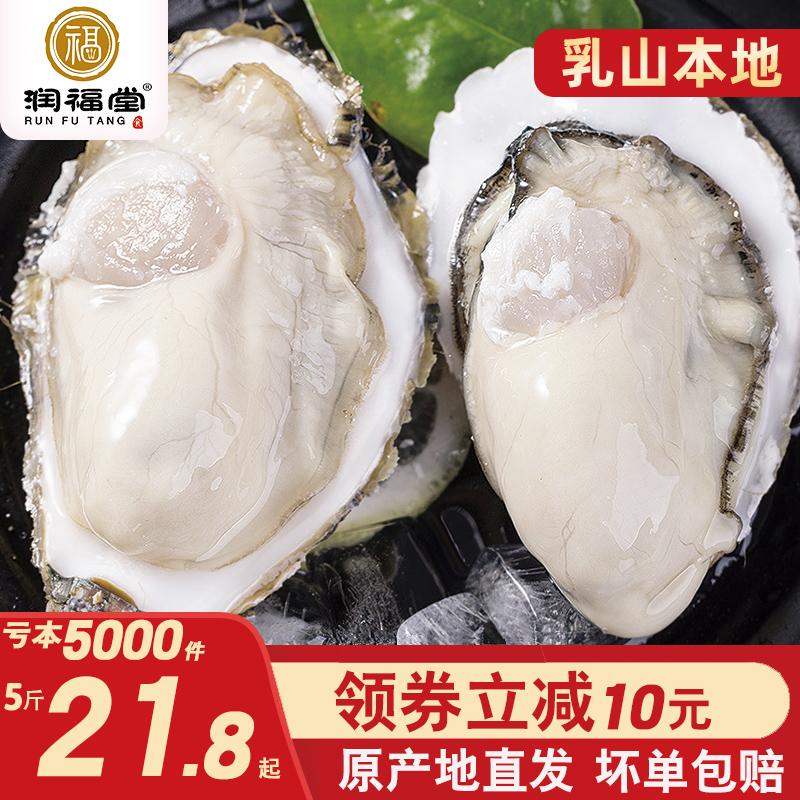 润福堂乳山生蚝新鲜牡蛎海鲜水产鲜活5斤10斤一箱即食带壳海蛎子