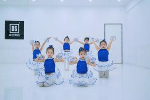 大眼睛爵士舞蹈儿童女童蓬蓬裙动感公主裙亮片连衣裙演出服表演服图片