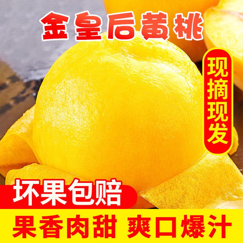 黃桃桃子新鮮水果炎陵黃桃新鮮10斤金皇后黃桃水果當季包郵