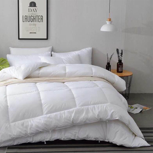 Five-star hotel special bedding cotton air-conditioning quilt white cotton spring and autumn imitation goose down summer quilt quilt core
