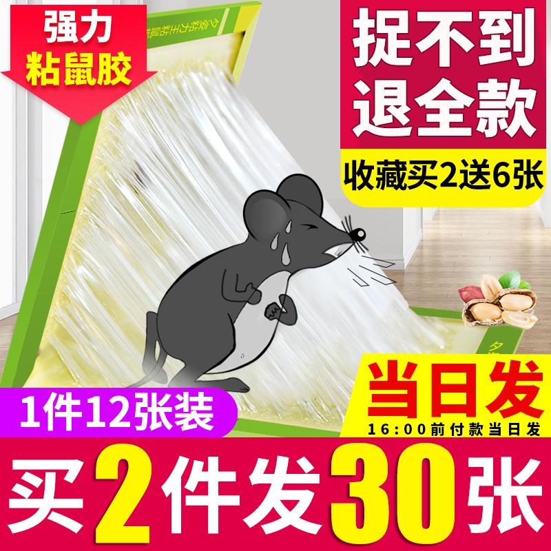 粘抓老鼠贴笼胶夹药粘鼠板强力捕鼠灭鼠器神器克星正品家用一窝端优惠券