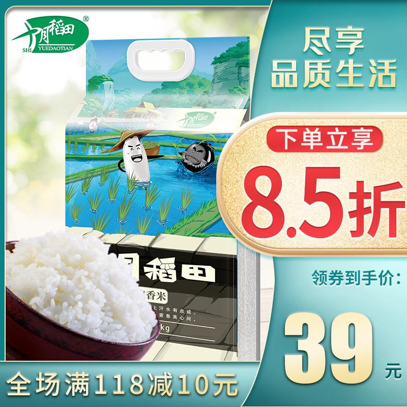 十月稻田 2019年新米东北长粒香大米5kg10斤农家香米东北大米粳米