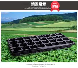 优质PS材质苗木穴盘/林木育苗盘/蔬菜瓜果多肉芽菜盘种植盘营养钵