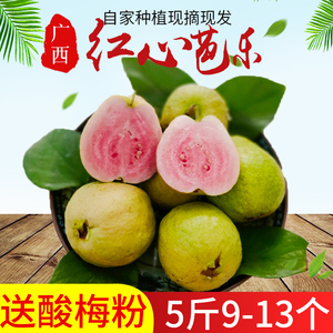 Guangxi red and white heart guava fresh fruit pregnant woman eats 5 kg free shipping sweet guava 10 is now picking 8 seasonal specialties