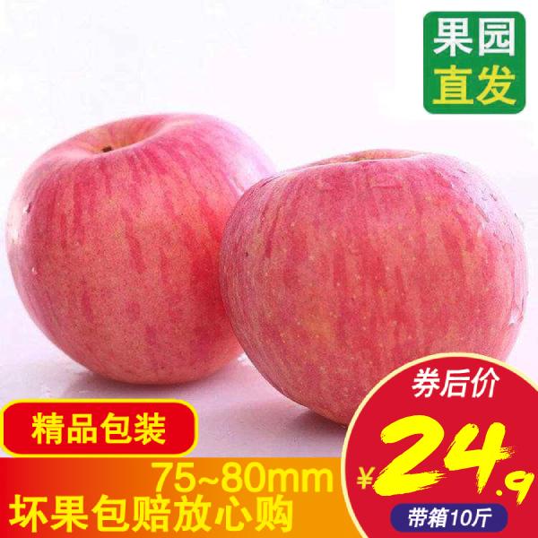 山西 红富士 苹果 新鲜 水果 冰糖 临猗 整箱