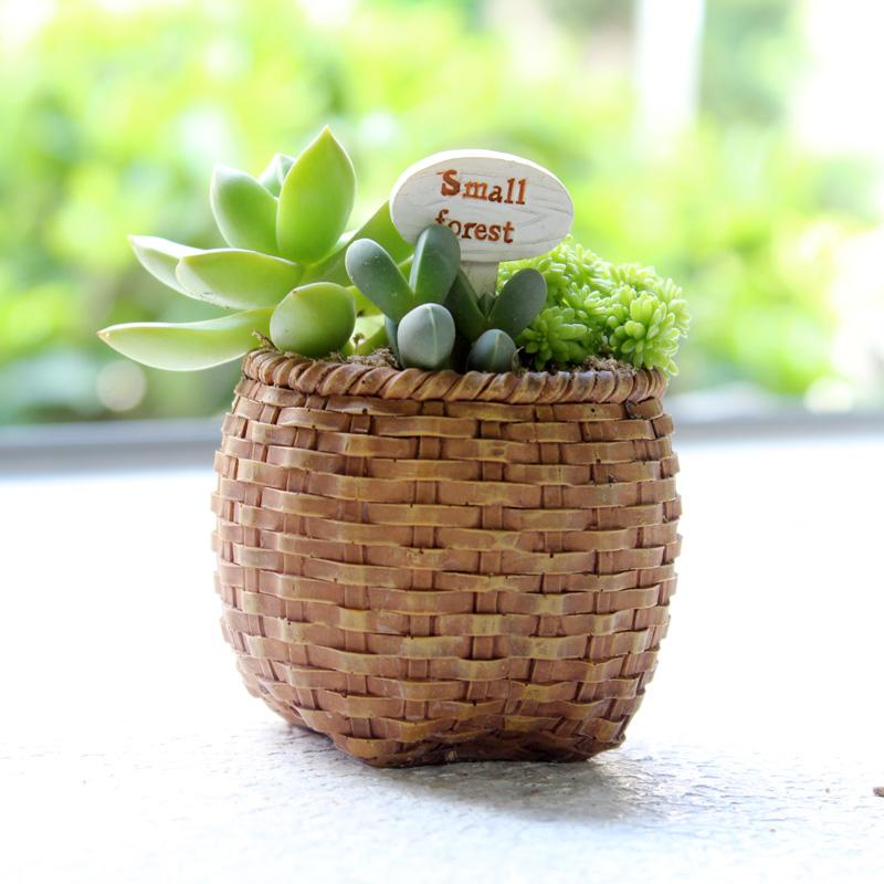 Zakka创意复古怀旧可爱迷你多肉植物花盆树脂时尚办公室小花器