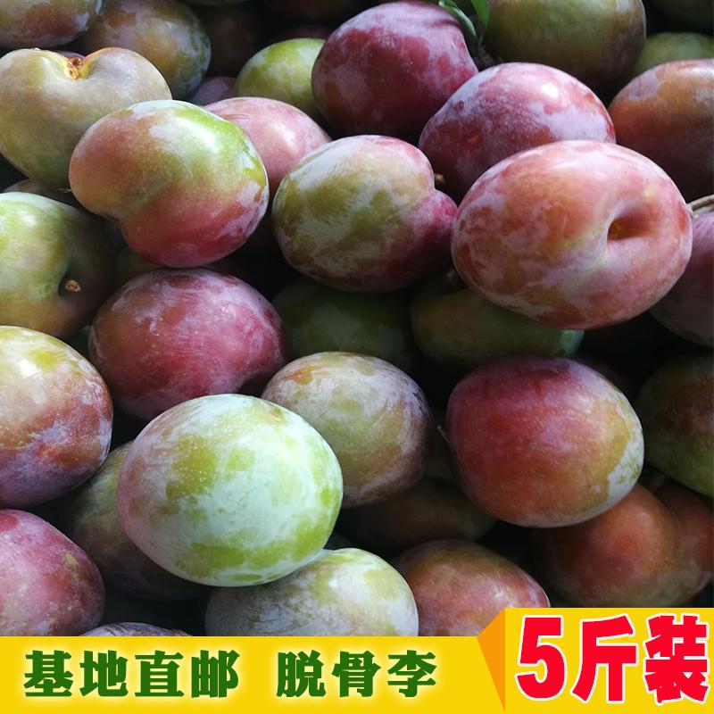 李子当季新鲜孕妇水果红梅李5斤包邮非三月李黑布李三华李西梅