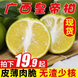 广西皇帝柑贡柑德庆橘子新鲜5斤大果水果蜜桔子当季整箱8斤带箱10