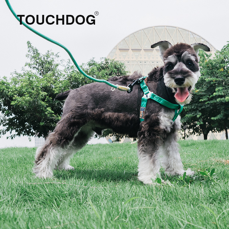 Touchdog它它宠物牵引绳狗链子狗胸背小型中型犬泰迪遛狗绳狗项圈