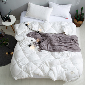 Washed cotton spring and autumn quilt core white thick winter quilt space quilt student dormitory single double bedding 1.5 m 2