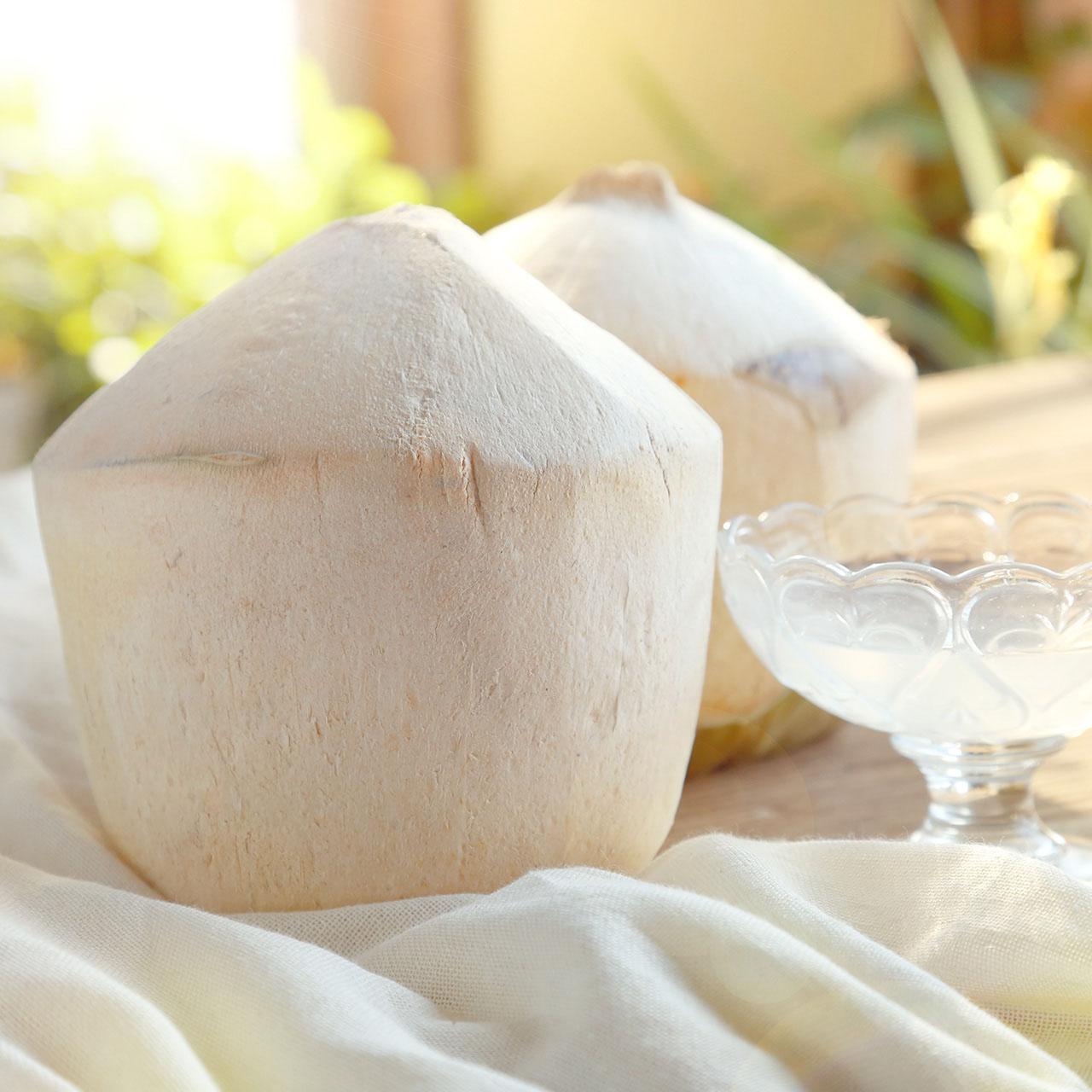 王小二 鲜果进口椰青新鲜好吃批发包邮当季应季时令特产