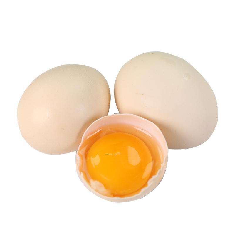 鸡蛋新鲜土鸡蛋农家散养深山草鸡柴鸡蛋本笨鸡蛋40枚装散养土鸡蛋