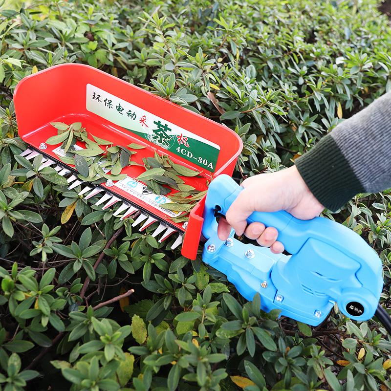 藤原电动采茶机单人小型充电式便携摘茶叶机器工具快速茶叶采摘机
