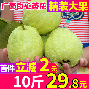 Guangxi specialty guava Baixin 10 catty Ba Le fruit pearl Ba Le fruit fresh Bao Pan Fan pomegranate
