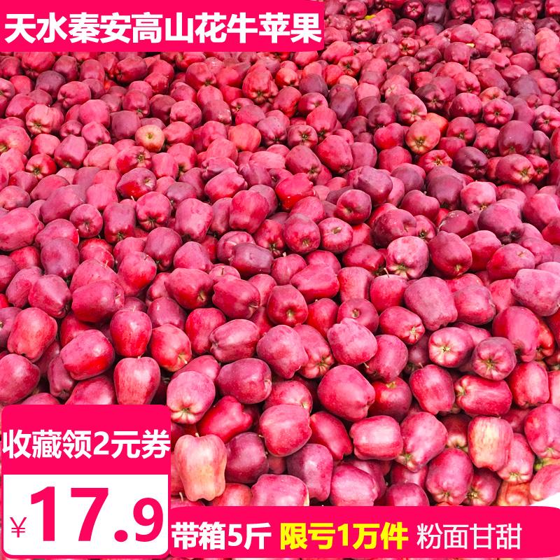 天水秦安花牛苹果水果新鲜整箱5/10斤包邮粉面刮泥红蛇果平萍果