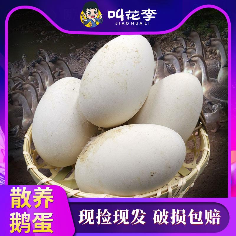 叫花李JIAOHUA LI散养鹅蛋现捡现发破损包赔-推好价   品质生活 精选好价