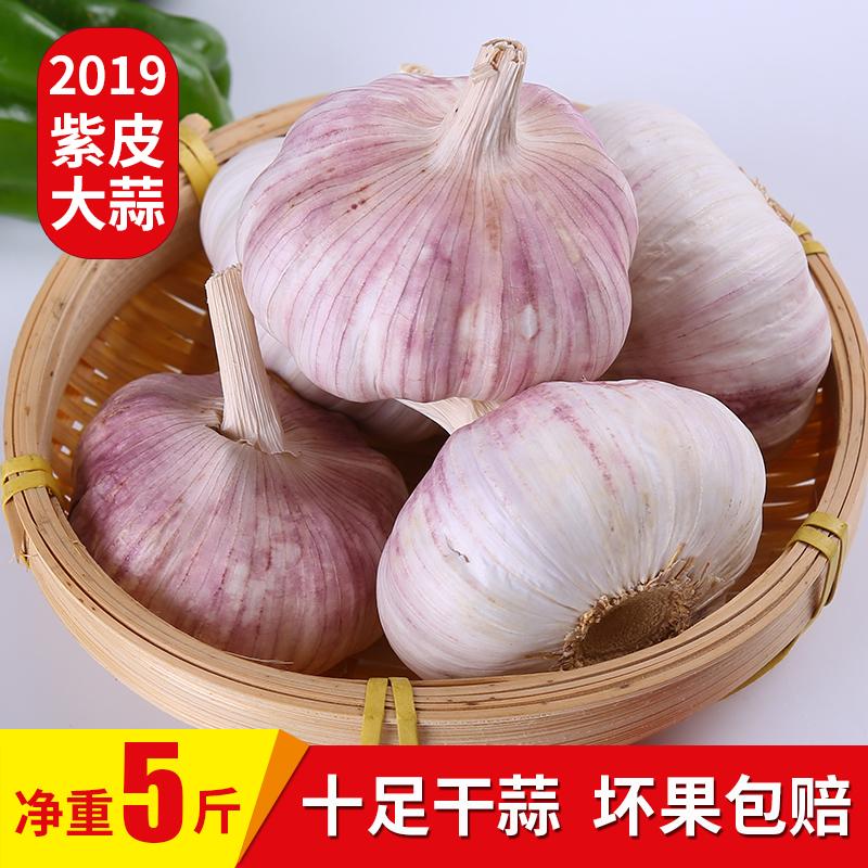 2019新鲜干大蒜头农家自种紫皮干蒜红香蒜5斤大蒜头干鲜蒜蒜瓣10