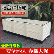 多功能家庭蔬菜种植jj6 阳台种zs 加厚长方形花盆特大花架槽