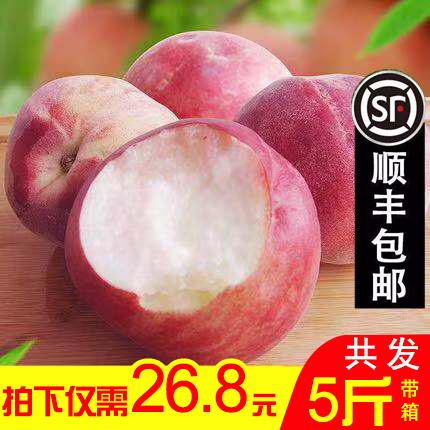 桃子水蜜桃新鲜水果山东毛桃金秋红蜜现货大果雪桃时令水果冬桃