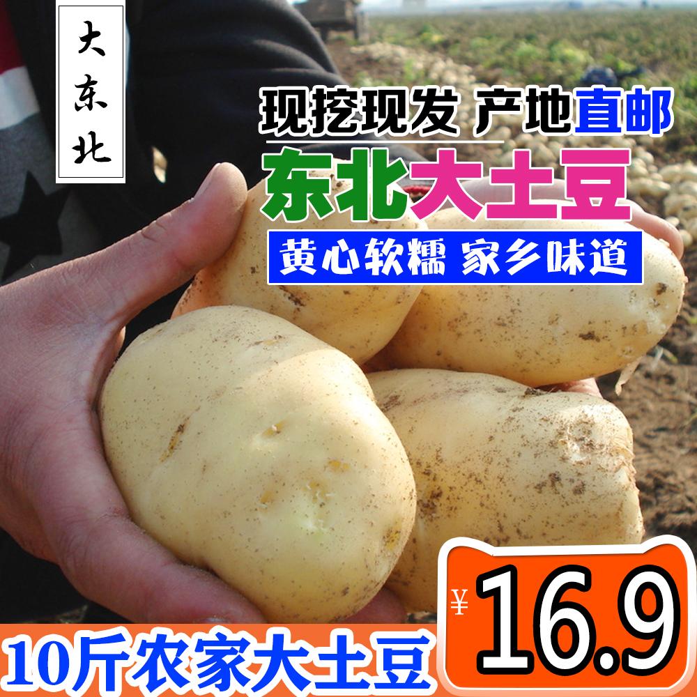 东北大土豆10斤新鲜洋芋现挖薄皮黄心农家马铃薯包邮小土豆红皮