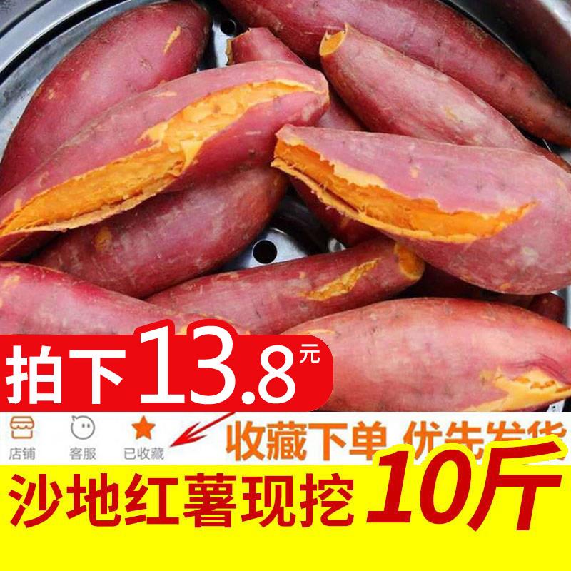 10斤红薯新鲜红薯香山芋地瓜板票红暑板粟小蕃薯农家蜜薯栗子番薯