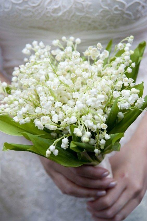 【预售请勿与现货一起拍】进口铃兰块根带芽花苗宋慧乔婚礼手捧花