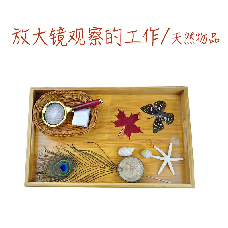 放大镜观察的工作 7种天然物品 蒙台梭利幼儿园科学文化教具套装