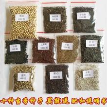 10种蔬菜种子套餐 秋zu8季四季农an阳台庭院种菜 菜籽肥料