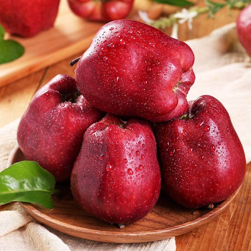 顺丰包邮 甘肃花牛新鲜苹果平安果 现摘现采新鲜水果