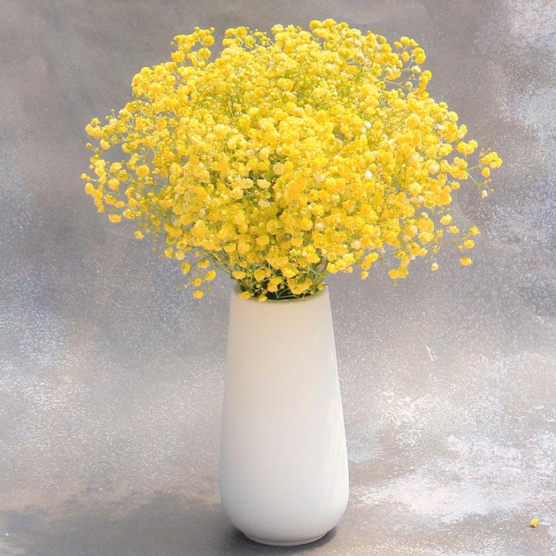 满天星干花花束带花瓶套装家居装饰摆件客厅摆舍插花北欧风粉色