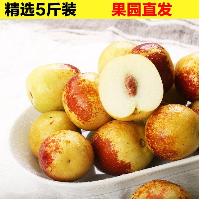 陕西大荔新鲜冬枣5斤 脆甜孕妇水果非沾化冬枣脆枣鲜枣子