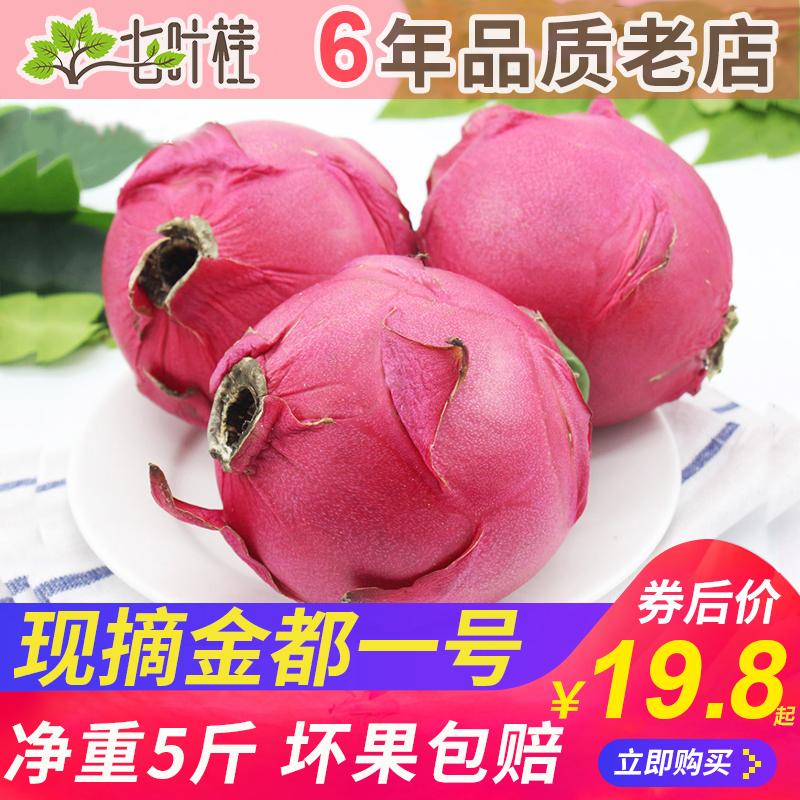 现摘广西红心火龙果新鲜金都一号中大果10 当季红色肉整箱水果5斤