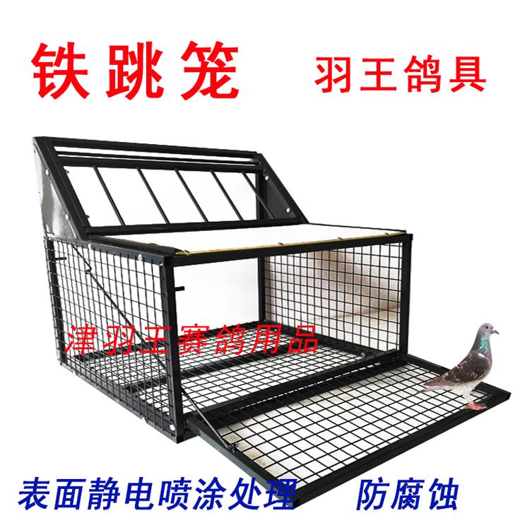 津羽王信鸽用品用具铁跳笼训放笼鸽子笼赛鸽撞门鸽棚放飞门鸽子笼