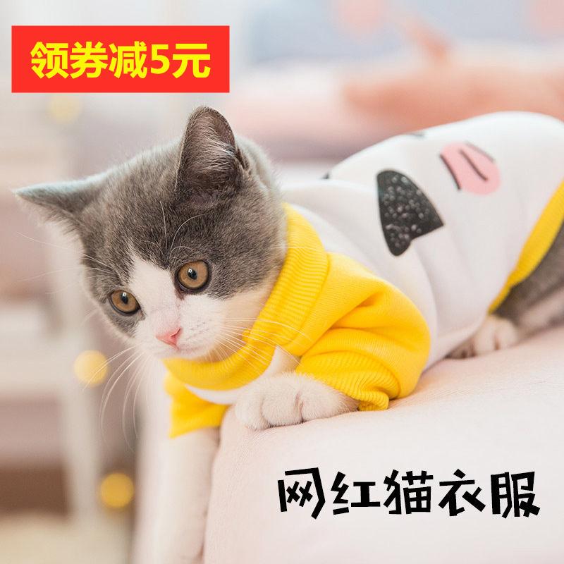 猫咪衣服秋冬装加厚保暖网红潮牌可爱小猫衣服幼猫橘猫宠物猫衣服