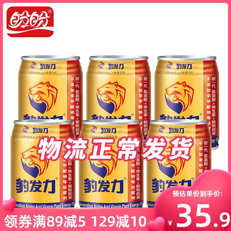盼盼豹发力250ml*6罐氨基酸维生素植物能量饮料运动健身饮品