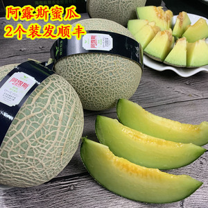 Fresh Alurus Honeydew Melon 2 super sweet and juicy mellow cantaloupe netted melon Seasonal seasonal fruits