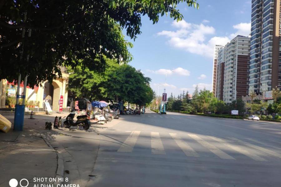 宜良县苏云鑫海国际3 幢1 单元1602 号