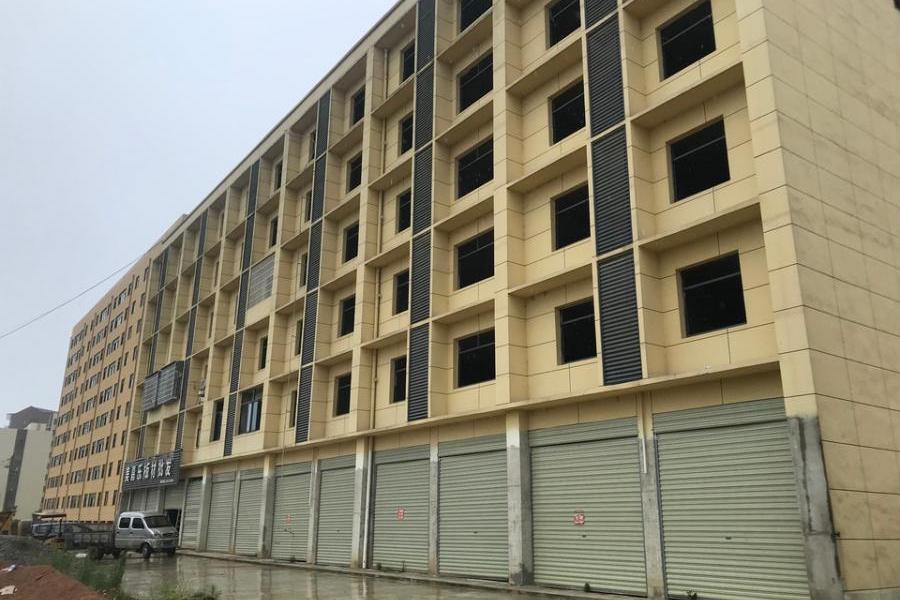武汉市新洲区辛冲镇东城湾土地使用权及地上建筑物