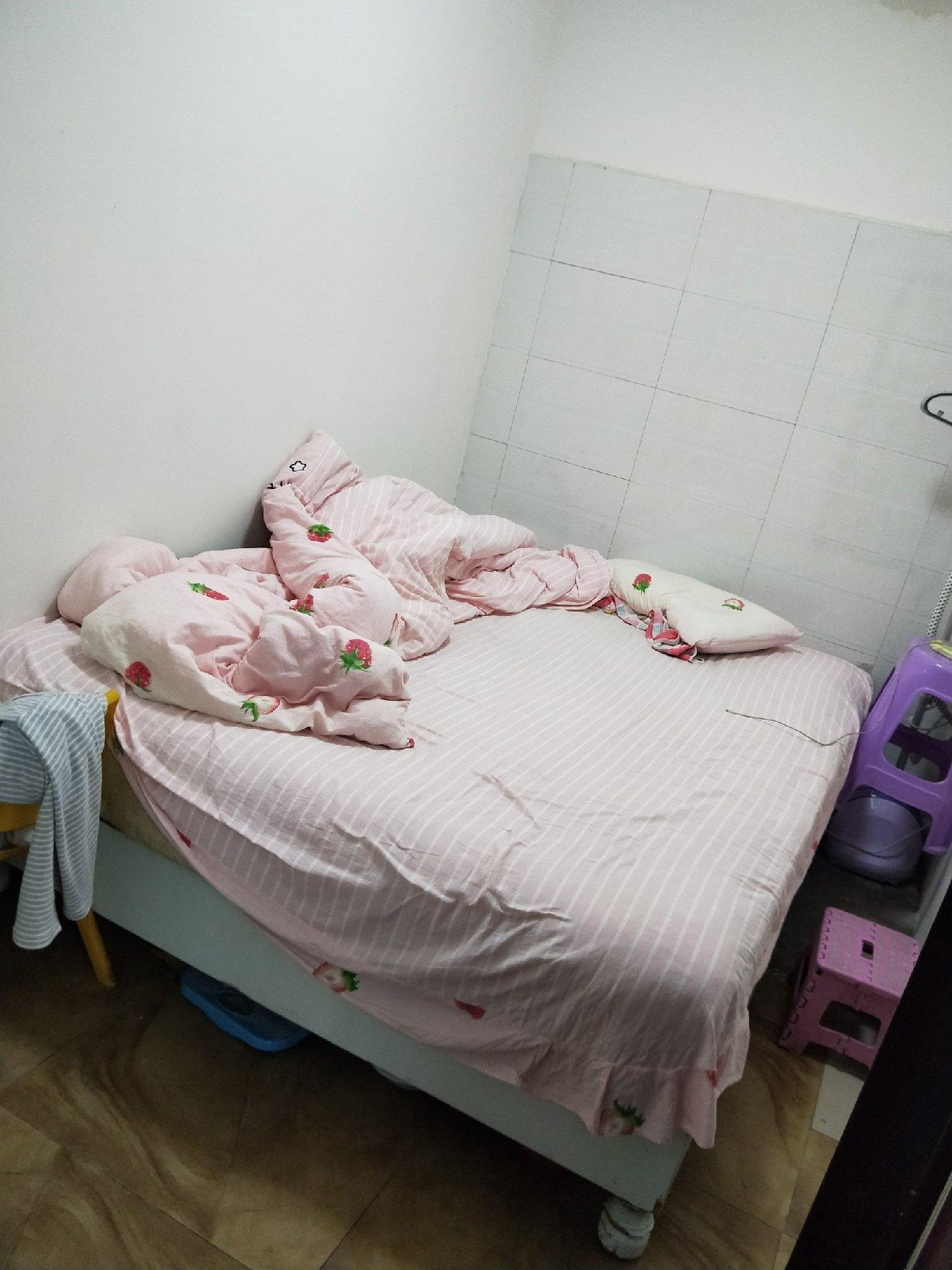桂花街两室一厅一厨一卫出租
