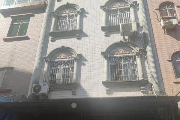被执行人练明付、温桂清共有的坐落于桂平市垌心乡垌心街的房屋一幢