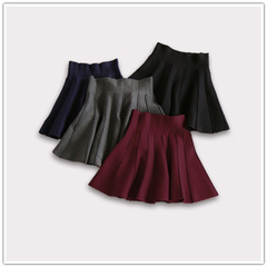 2014 Winter temperament Joker new retro self-cultivation thin knitted dress skirts/code price promotions