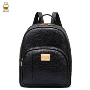 2015 North bag female Korean autumn new style fashion backpack travel bag x
