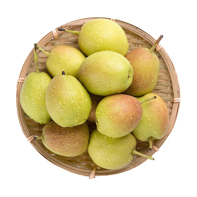 悠乐果 新疆库尔勒香梨包邮梨子新鲜水果批发16个装