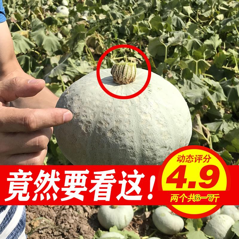 正宗新疆板栗南瓜6-7斤 沙漠银栗老南瓜二胎宝宝辅食绝非日本贝贝