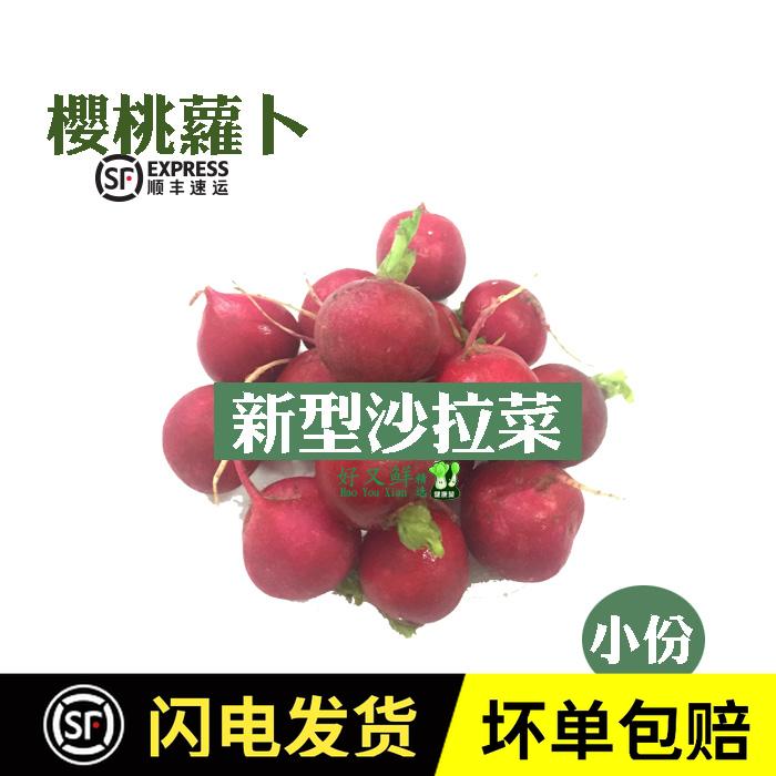 新鲜蔬菜 樱桃萝卜迷你小萝卜仔 健身沙拉菜 泡菜 西餐厅食材250g